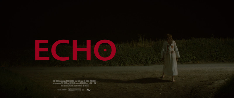 Echo-poster