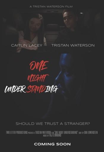 one night understanding-poster